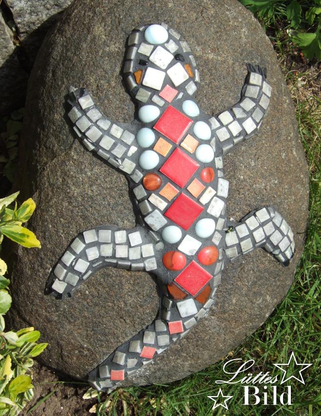 Salamander_660x855