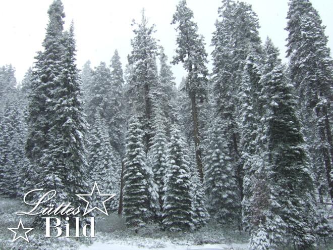 winter_660x495