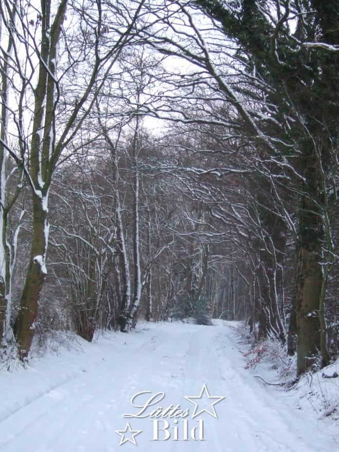 Winterweg_660x880