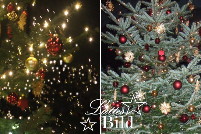 Weihnachtsbaum.teil_660x440