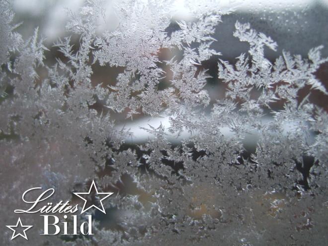 Eisblumen.11_660x495