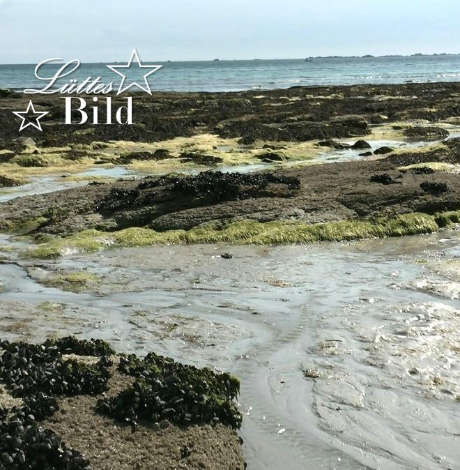 Bretagne_660x674