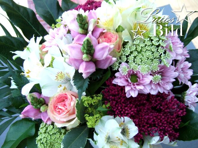 Blumen_660x495