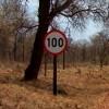 100kmh_100x100