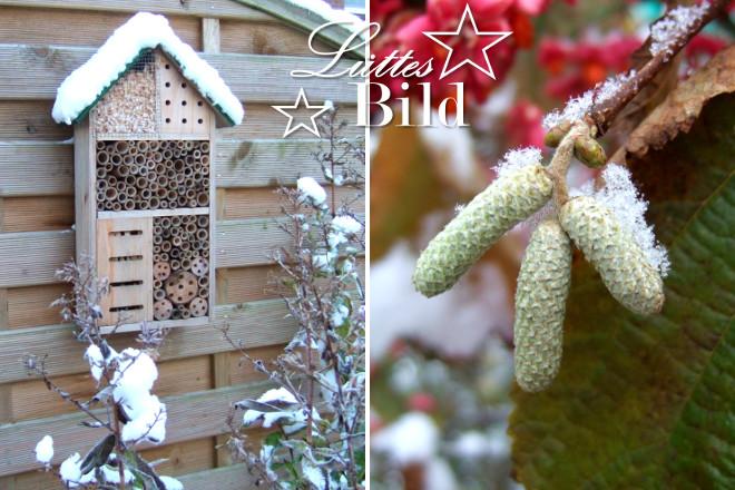 2bilder-winter328x440_660x440