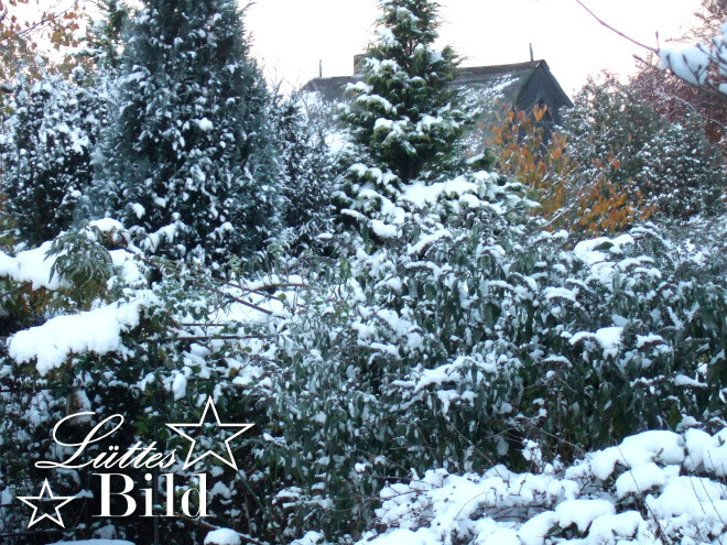 gartenblick-im-winter_660x495